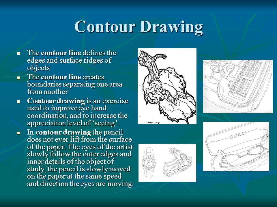 Contour Drawing The contour line defines the edges and surface ridges of objects The contour line defines the edges and surface ridges of objects The