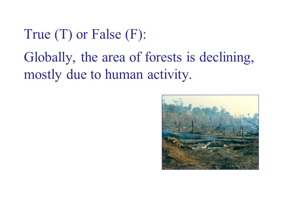 True (T) or False (F): Globally, the area of forests is declining, mostly due to human activity.