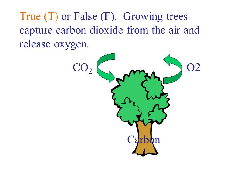 CO 2 O2 Carbon