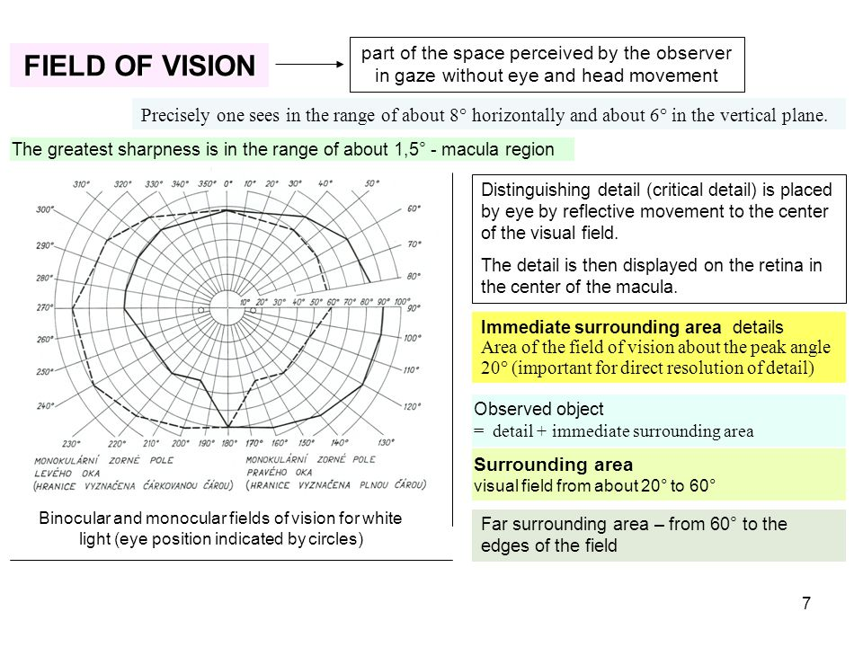 7 FIELD OF VISION part of the space perceived by the observer in gaze without eye and head movement Precisely one sees in the range of about 8° horizo