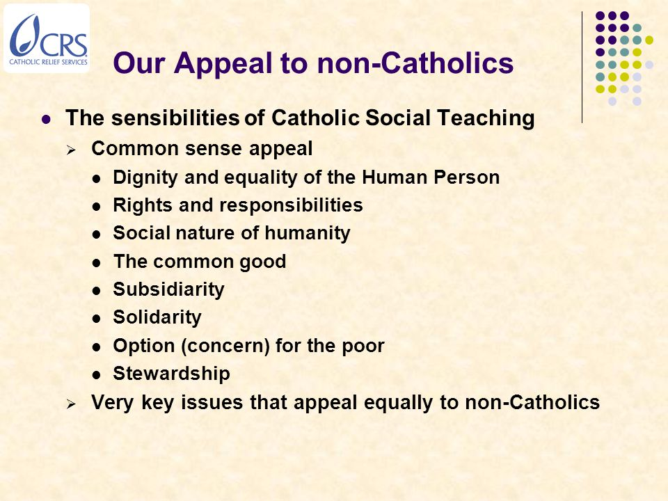 Our Appeal to non-Catholics The sensibilities of Catholic Social Teaching  Common sense appeal Dignity and equality of the Human Person Rights and responsibilities Social nature of humanity The common good Subsidiarity Solidarity Option (concern) for the poor Stewardship  Very key issues that appeal equally to non-Catholics