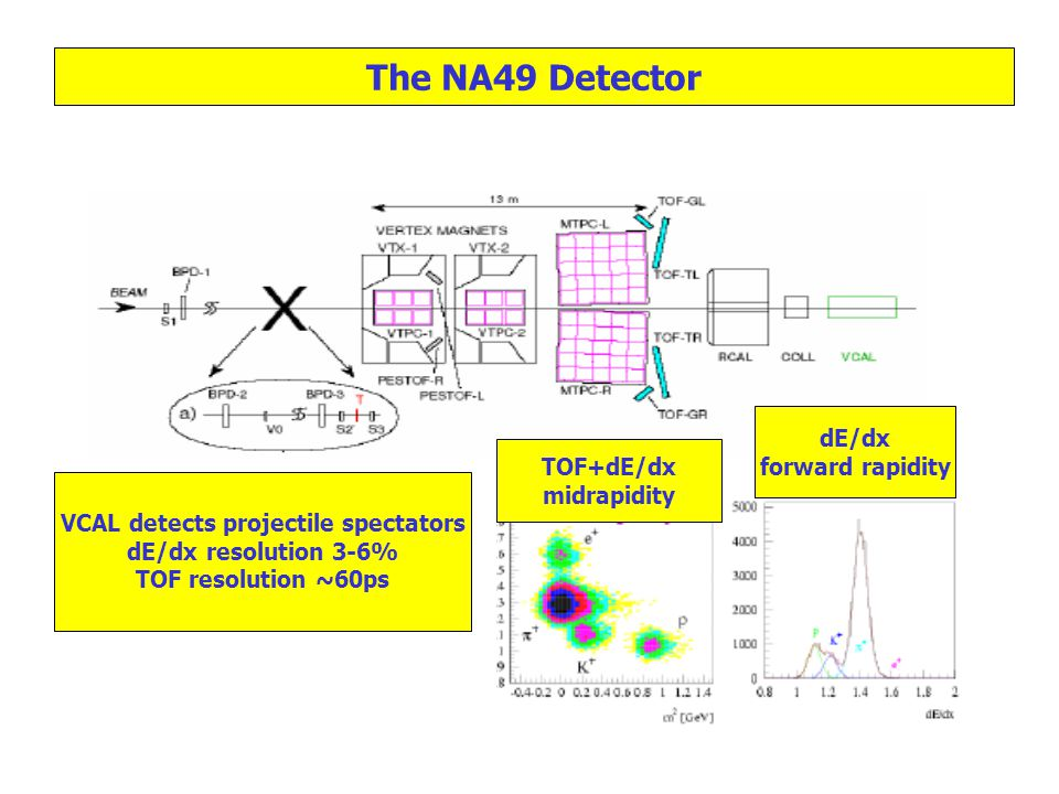 dE/dx forward rapidity TOF+dE/dx midrapidity The NA49 Detector VCAL detects projectile spectators dE/dx resolution 3-6% TOF resolution ~60ps