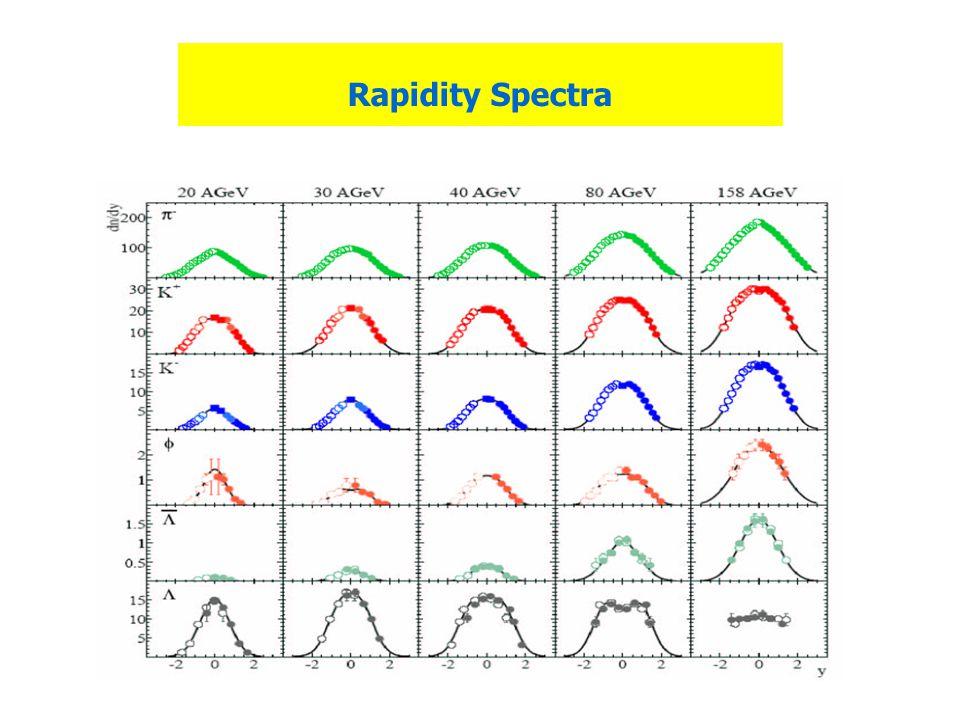 Rapidity Spectra