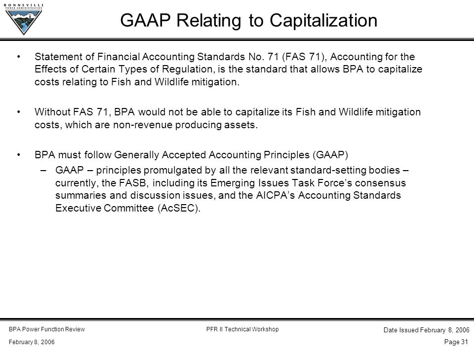 BPA Power Function ReviewPFR II Technical Workshop February 8, 2006 Date Issued February 8, 2006 Page 31 GAAP Relating to Capitalization Statement of