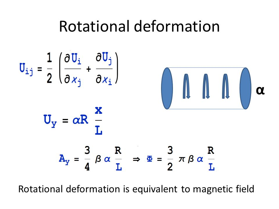 Rotational deformation α Rotational deformation is equivalent to magnetic field