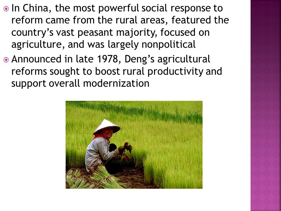  In China, the most powerful social response to reform came from the rural areas, featured the country's vast peasant majority, focused on agriculture, and was largely nonpolitical  Announced in late 1978, Deng's agricultural reforms sought to boost rural productivity and support overall modernization