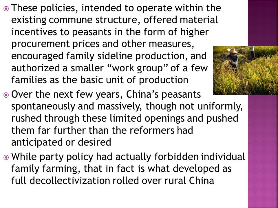  These policies, intended to operate within the existing commune structure, offered material incentives to peasants in the form of higher procurement prices and other measures, encouraged family sideline production, and authorized a smaller work group of a few families as the basic unit of production  Over the next few years, China's peasants spontaneously and massively, though not uniformly, rushed through these limited openings and pushed them far further than the reformers had anticipated or desired  While party policy had actually forbidden individual family farming, that in fact is what developed as full decollectivization rolled over rural China