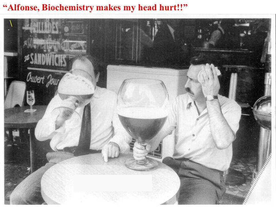 """""""Alfonse, Biochemistry makes my head hurt!!"""" \"""