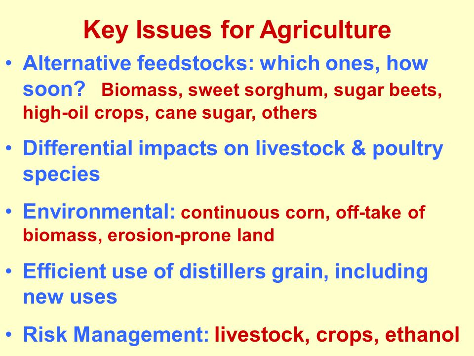 Key Issues for Agriculture Alternative feedstocks: which ones, how soon.