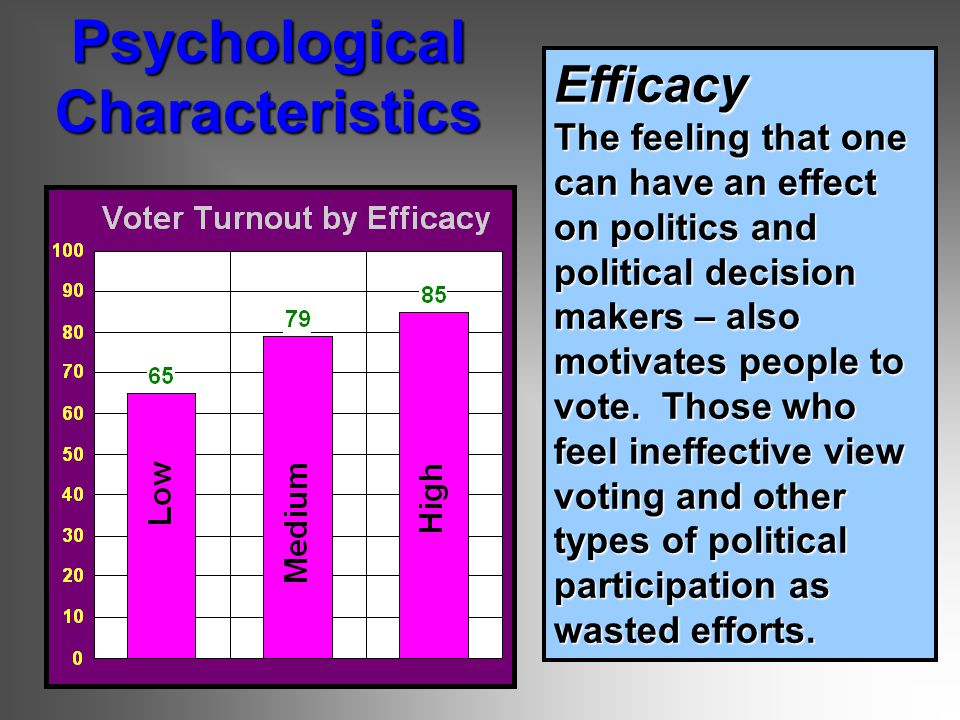 Efficacy The feeling that one can have an effect on politics and political decision makers – also motivates people to vote.