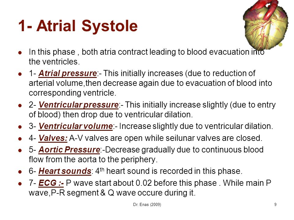 9 1- Atrial Systole In this phase, both atria contract leading to blood evacuation into the ventricles. 1- Atrial pressure:- This initially increases