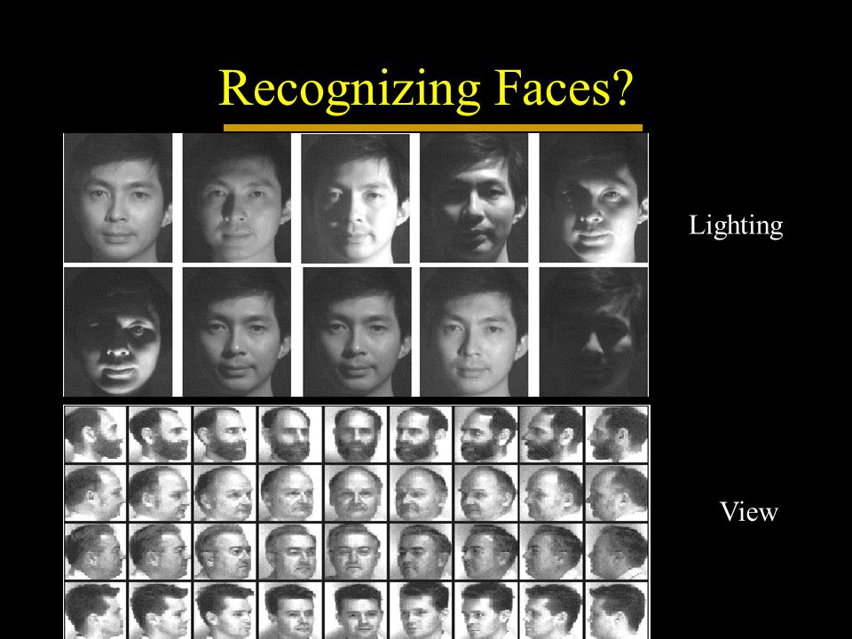 Recognizing Faces? Lighting View