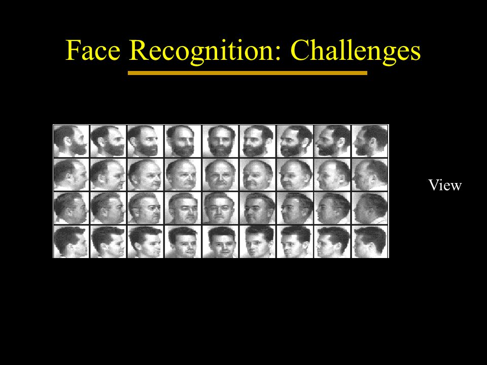 Face Recognition: Challenges View