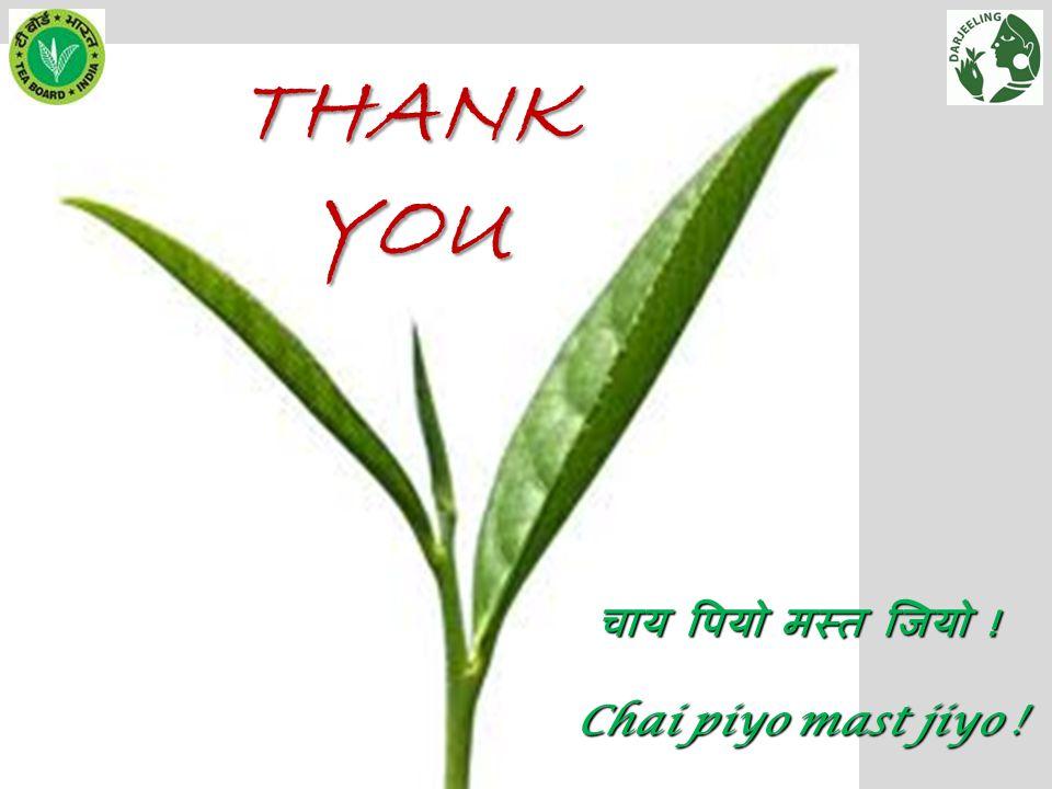 THANK YOU चाय पियो मस्त जियो ! Chai piyo mast jiyo !