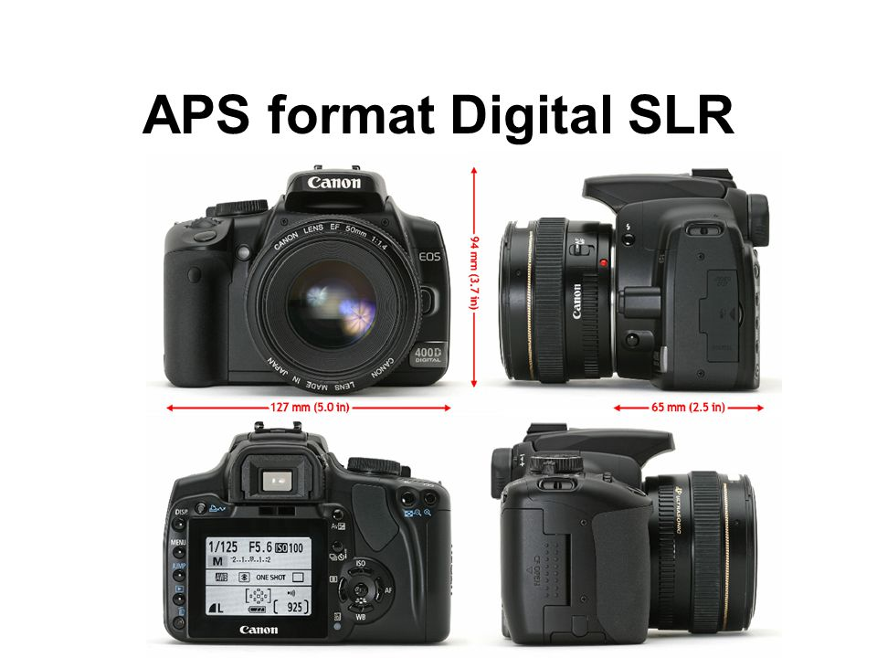 APS format Digital SLR
