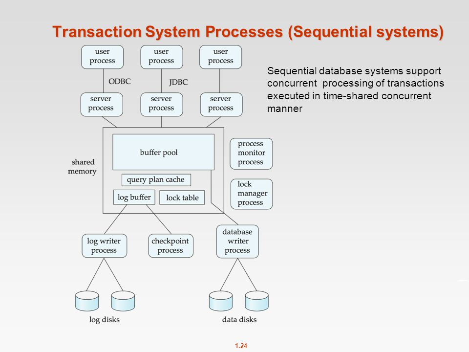 1.24 Transaction System Processes (Sequential systems) Sequential database systems support concurrent processing of transactions executed in time-shar