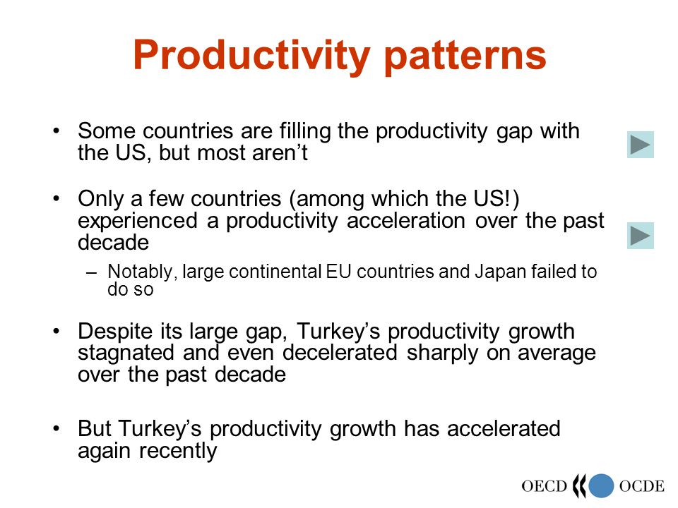 Productivity patterns Some countries are filling the productivity gap with the US, but most aren't Only a few countries (among which the US!) experienced a productivity acceleration over the past decade –Notably, large continental EU countries and Japan failed to do so Despite its large gap, Turkey's productivity growth stagnated and even decelerated sharply on average over the past decade But Turkey's productivity growth has accelerated again recently