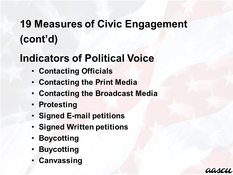 19 Measures of Civic Engagement (cont'd) Indicators of Political Voice Contacting Officials Contacting the Print Media Contacting the Broadcast Media