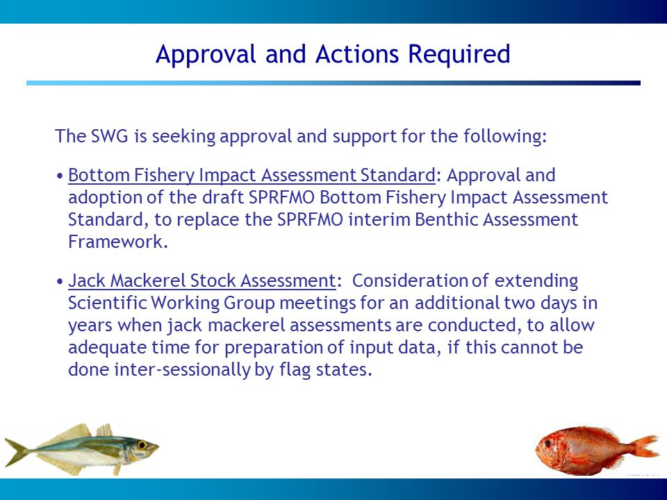 Approval and Actions Required The SWG is seeking approval and support for the following: Bottom Fishery Impact Assessment Standard: Approval and adoption of the draft SPRFMO Bottom Fishery Impact Assessment Standard, to replace the SPRFMO interim Benthic Assessment Framework.