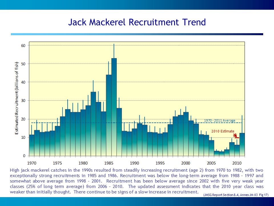 Jack Mackerel Recruitment Trend High jack mackerel catches in the 1990s resulted from steadily increasing recruitment (age 2) from 1970 to 1982, with two exceptionally strong recruitments in 1985 and 1986.