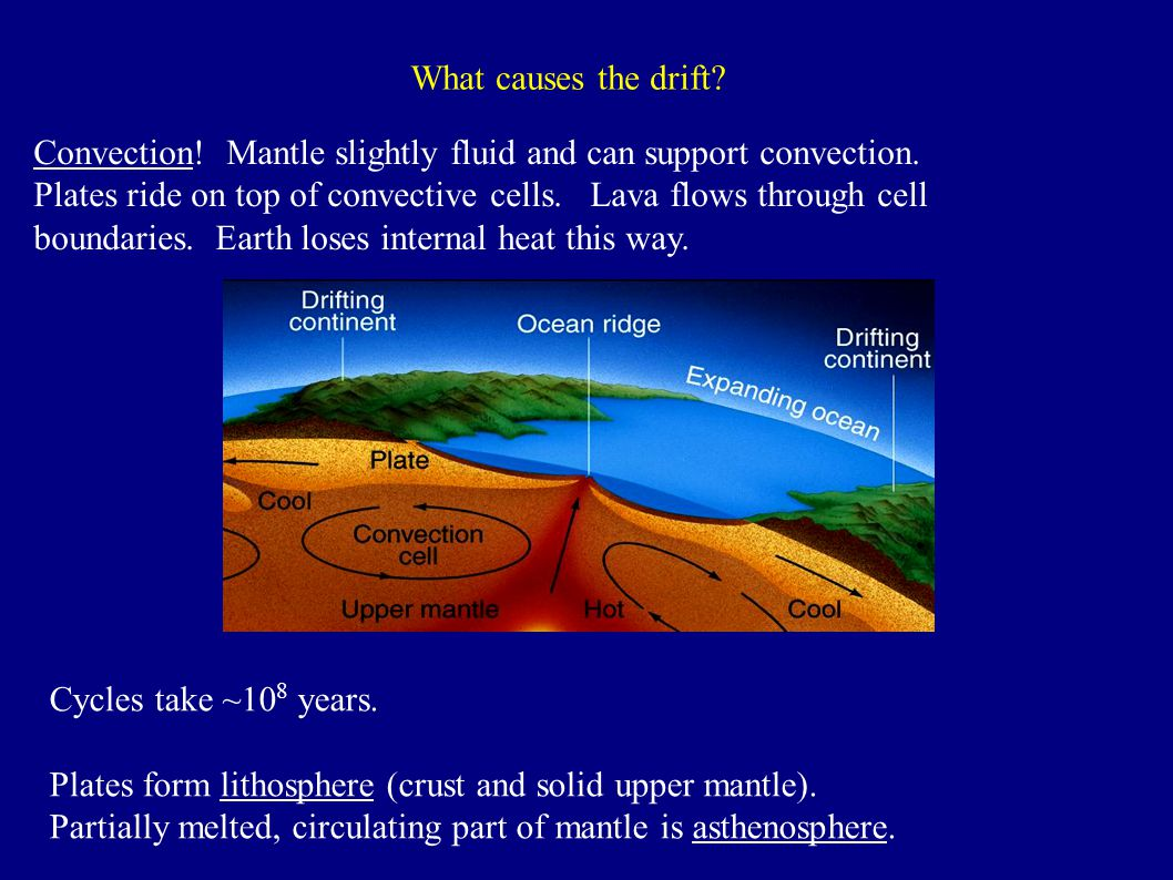 What causes the drift. Convection. Mantle slightly fluid and can support convection.