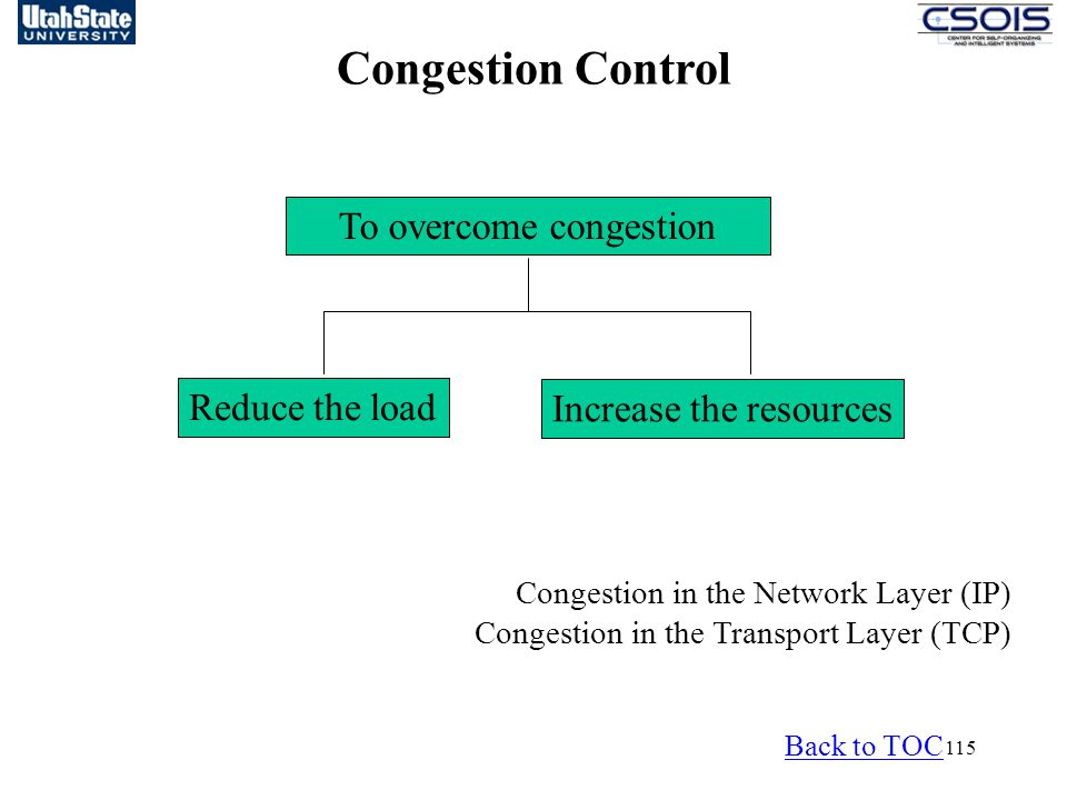 115 To overcome congestion Reduce the load Increase the resources Congestion in the Network Layer (IP) Congestion in the Transport Layer (TCP) Congestion Control Back to TOC