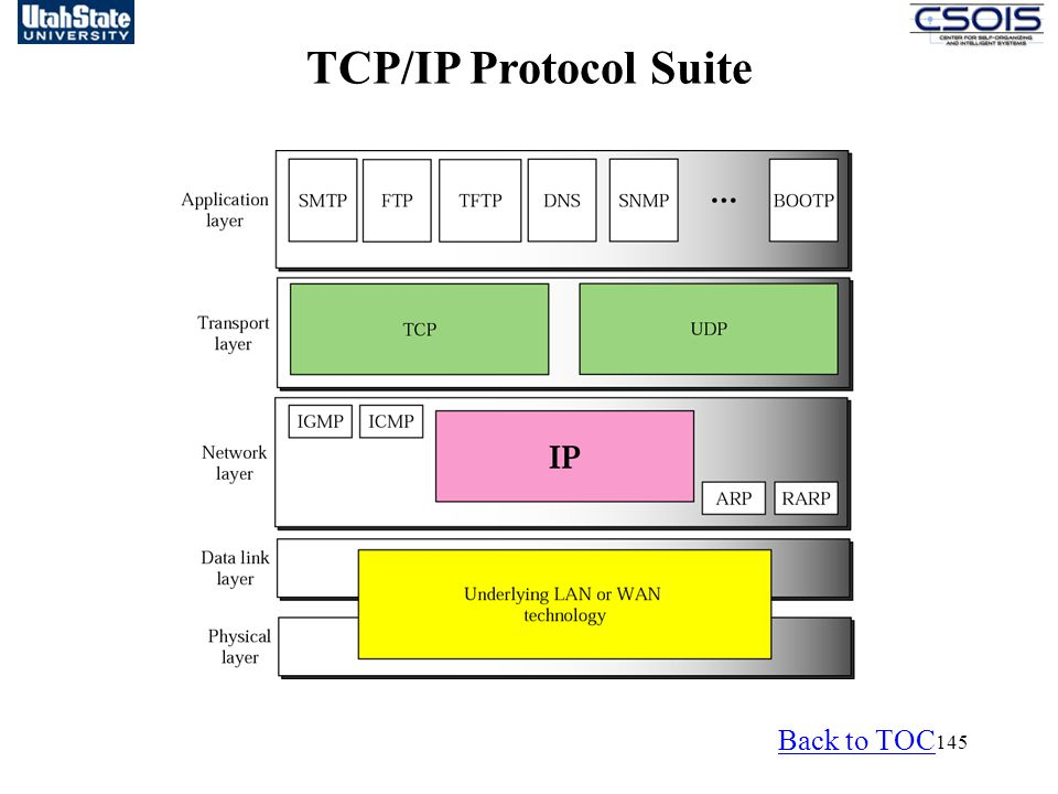 145 TCP/IP Protocol Suite Back to TOC