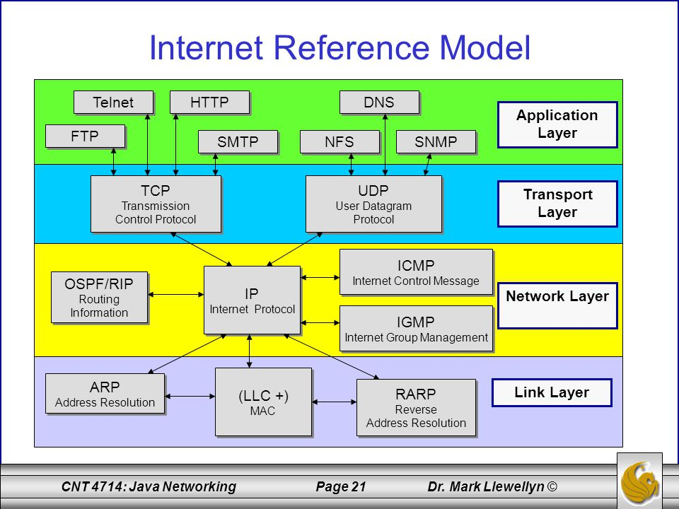 CNT 4714: Java Networking Page 21 Dr. Mark Llewellyn © Internet Reference Model Telnet HTTP DNS FTP SMTP NFS SNMP TCP Transmission Control Protocol TC