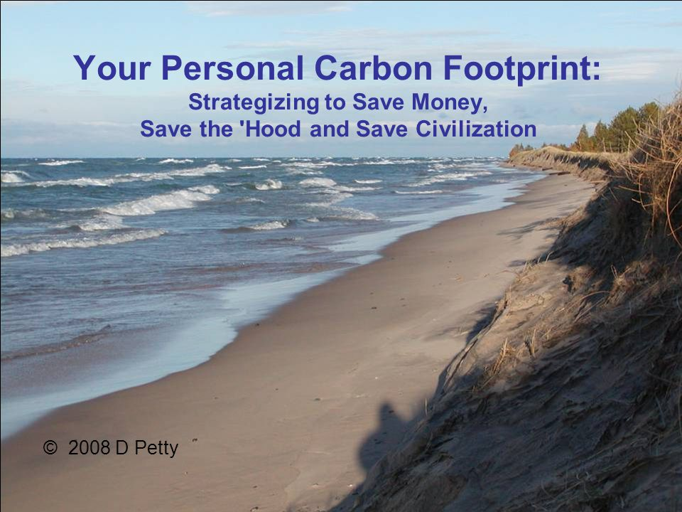 Your Personal Carbon Footprint: Strategizing to Save Money, Save the Hood and Save Civilization © 2008 D Petty