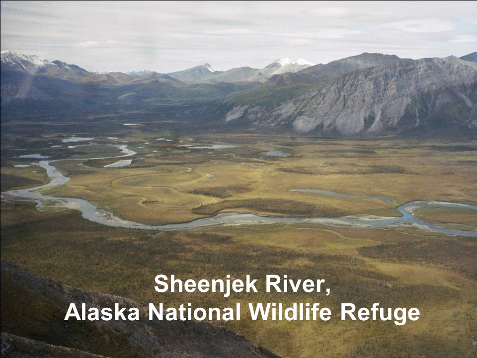 Sheenjek River, Alaska National Wildlife Refuge