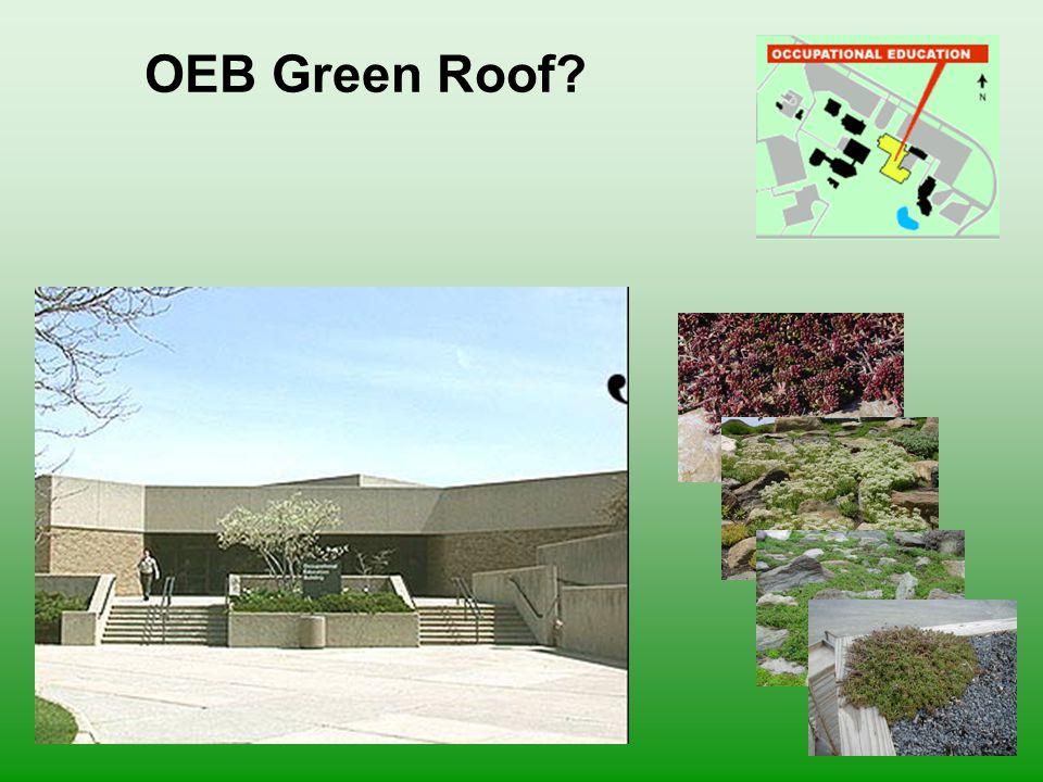 OEB Green Roof?