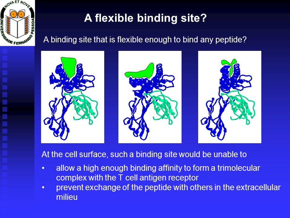 A flexible binding site.
