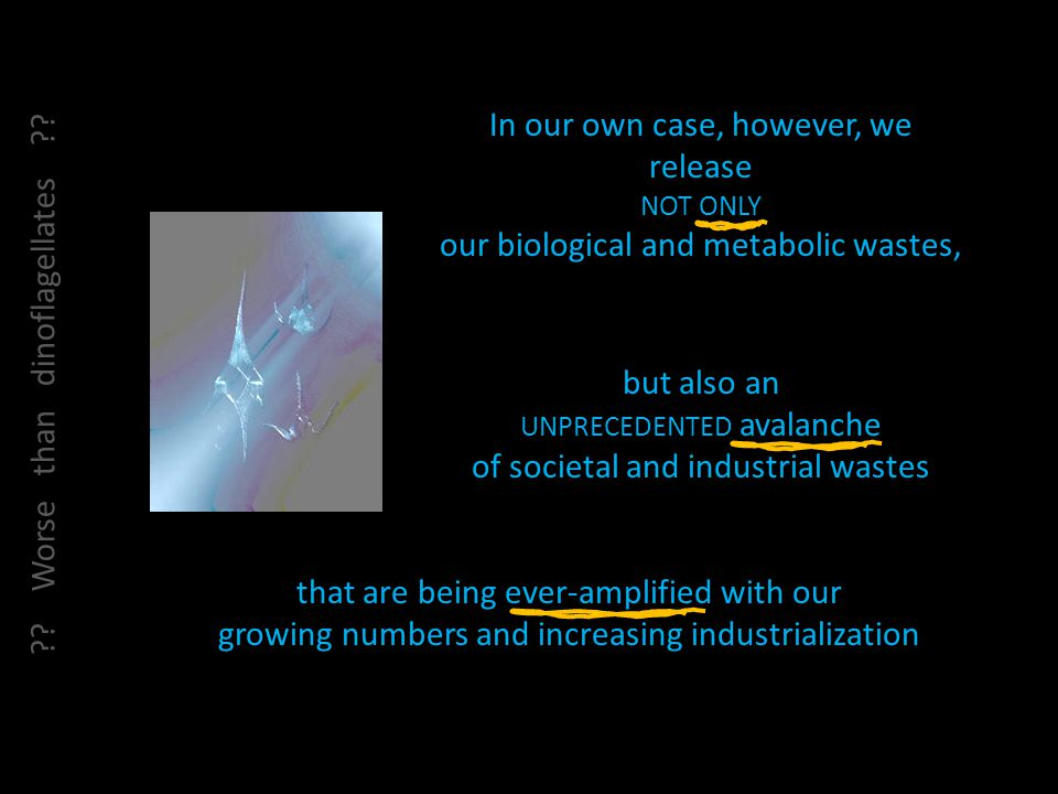In our own case, however, we release NOT ONLY our biological and metabolic wastes, but also an UNPRECEDENTED avalanche of societal and industrial wastes that are being ever-amplified with our growing numbers and increasing industrialization .