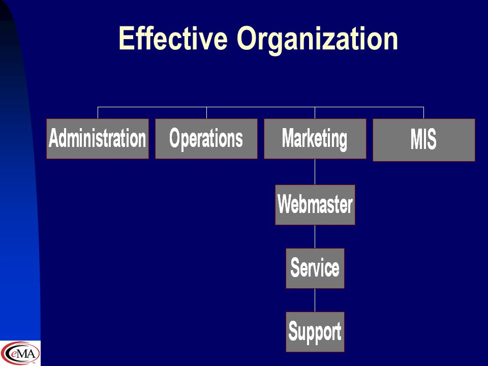 Efficient Organization