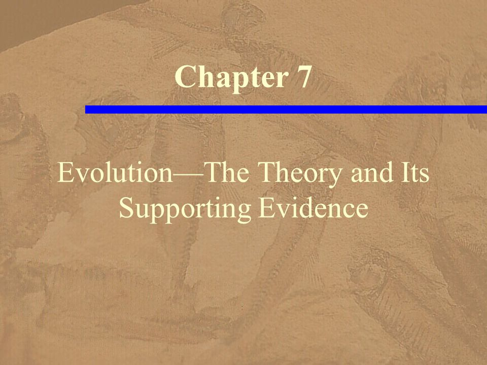 Darwin cited supporting evidence –for evolutionary theory such as classification embryology comparative anatomy geographic distribution fossil record, to a limited extent He had little knowledge –of the mechanism of inheritance, –and biochemistry and molecular biology –were unknown at his time Evidence in Support of Evolution