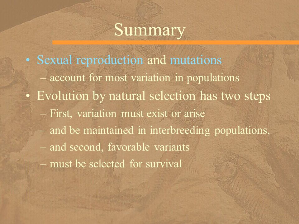 Summary Sexual reproduction and mutations –account for most variation in populations Evolution by natural selection has two steps –First, variation mu