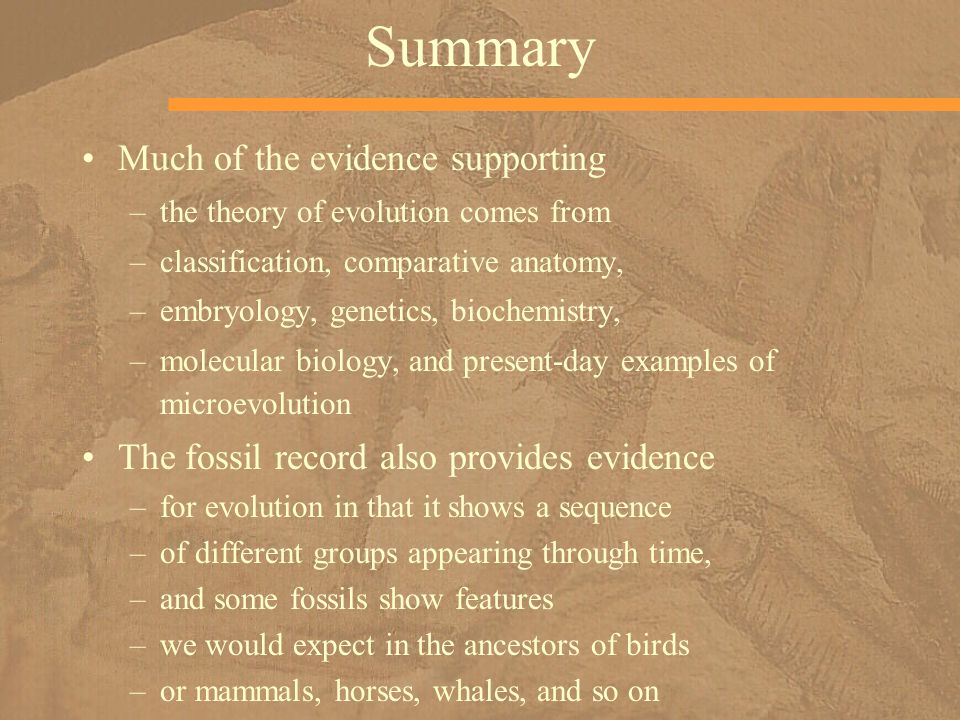Summary Much of the evidence supporting –the theory of evolution comes from –classification, comparative anatomy, –embryology, genetics, biochemistry,