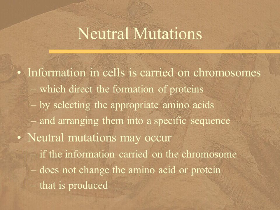 Information in cells is carried on chromosomes –which direct the formation of proteins –by selecting the appropriate amino acids –and arranging them i