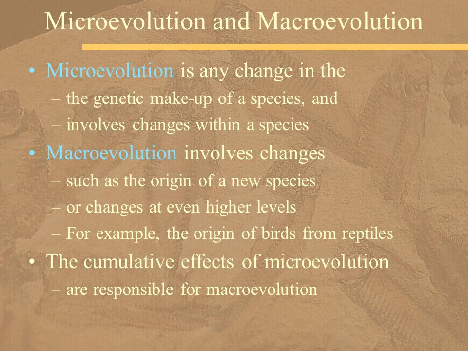 Microevolution is any change in the –the genetic make-up of a species, and –involves changes within a species Macroevolution involves changes –such as