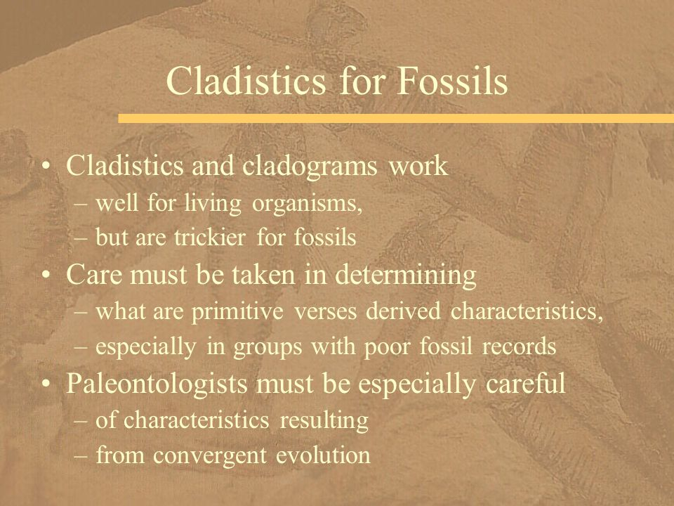 Cladistics and cladograms work –well for living organisms, –but are trickier for fossils Care must be taken in determining –what are primitive verses