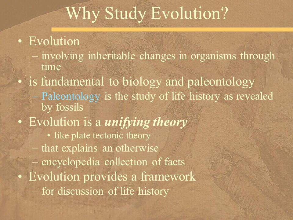 But isn't evolution by natural selection –a random process.