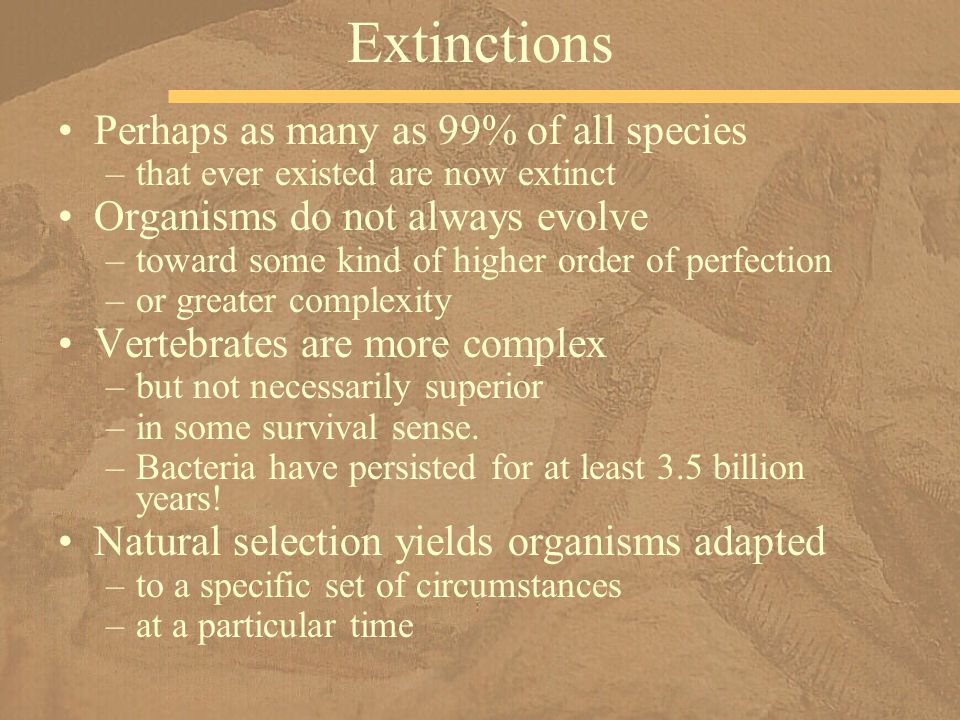 Perhaps as many as 99% of all species –that ever existed are now extinct Organisms do not always evolve –toward some kind of higher order of perfectio