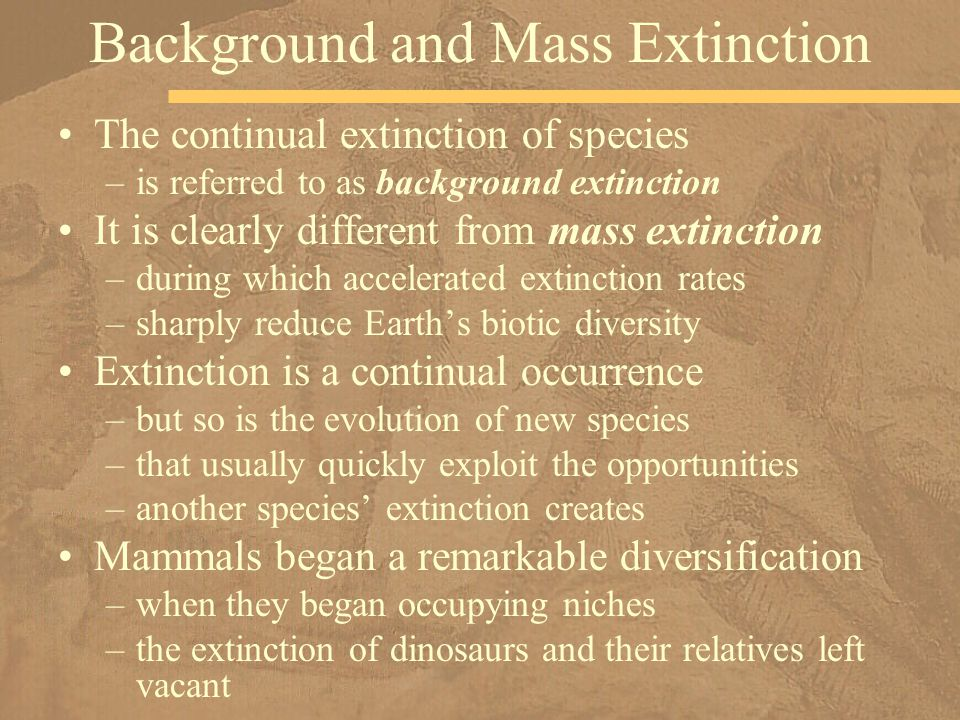 The continual extinction of species –is referred to as background extinction It is clearly different from mass extinction –during which accelerated ex