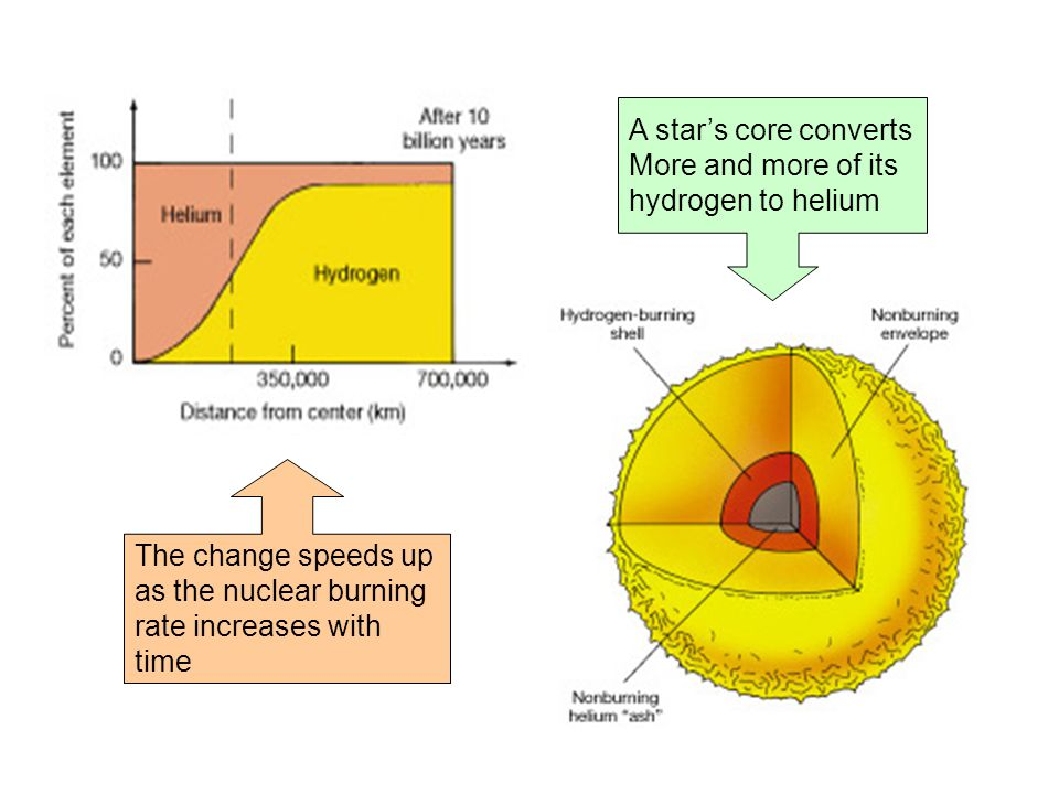 The change speeds up as the nuclear burning rate increases with time A star's core converts More and more of its hydrogen to helium