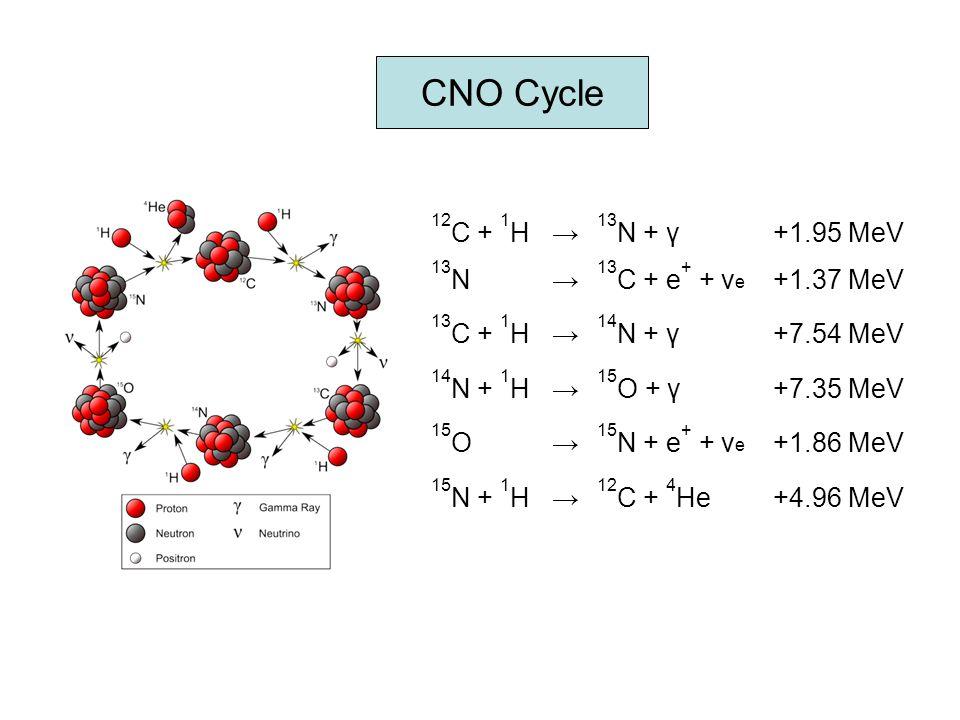CNO Cycle 12 C + 1 H→ 13 N + γ+1.95 MeV 13 N→ 13 C + e + + ν e +1.37 MeV 13 C + 1 H→ 14 N + γ+7.54 MeV 14 N + 1 H→ 15 O + γ+7.35 MeV 15 O→ 15 N + e +