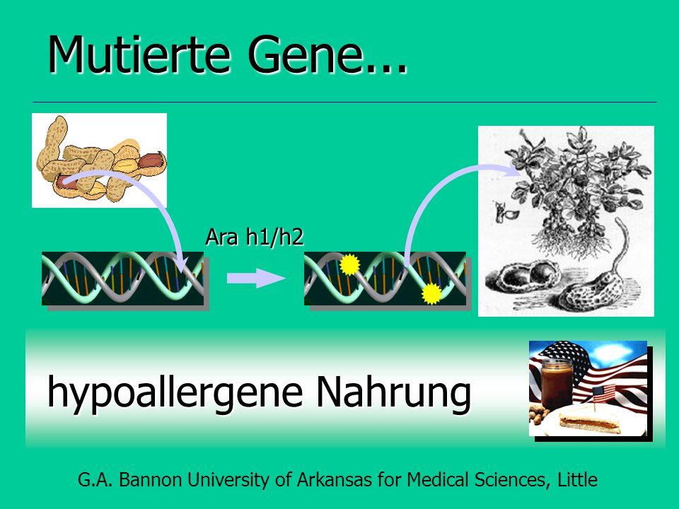 Mutierte Gene... hypoallergene Nahrung Ara h1/h2 G.A.