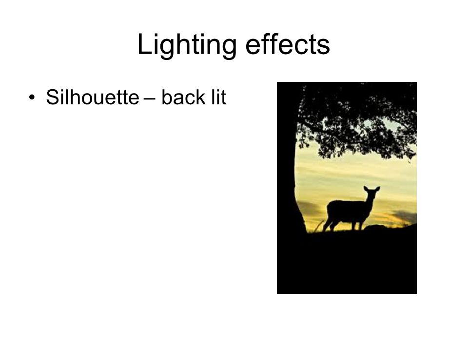 Lighting effects Silhouette – back lit