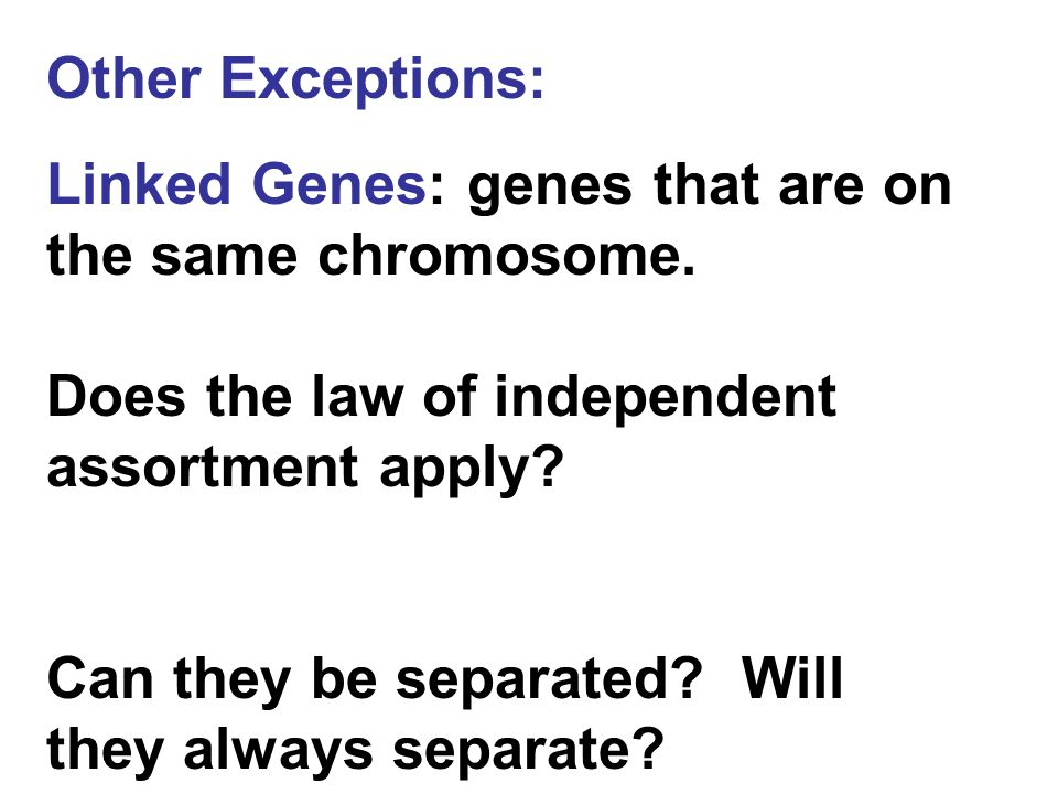 Other Exceptions: Linked Genes: genes that are on the same chromosome. Does the law of independent assortment apply? Can they be separated? Will they