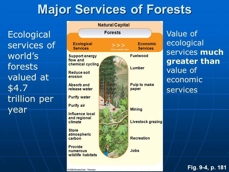 Biodiversity Hot Spots Fig. 8-26, p. 176