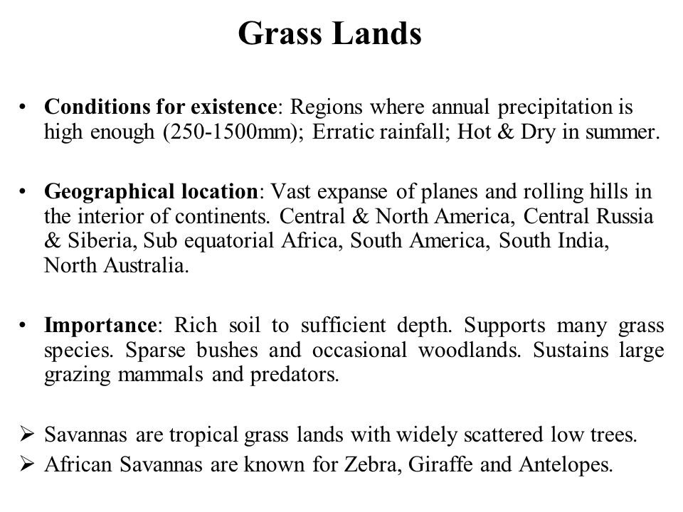 Grass Lands Conditions for existence: Regions where annual precipitation is high enough (250-1500mm); Erratic rainfall; Hot & Dry in summer. Geographi